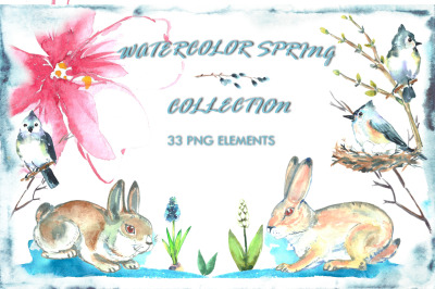 Watercolor spring collection.