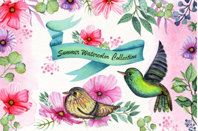 Watercolor Summer Collection