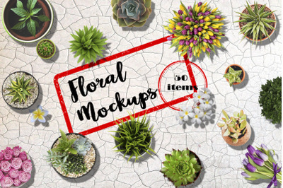 Floral Mockups. Flowers in pots and not only