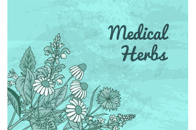 Vector hand drawn medical herbs background with place for text illustr