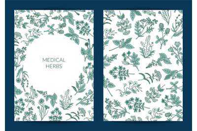 Vector hand drawn medical herbs card or flyer template illustration