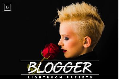 Blogger Lightroom Presests