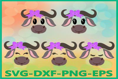 Buffalo face SVG, Safari Animal svg, Buffalo with Bow Svg