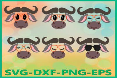 Safari Animal Svg, Buffalo face SVG, bison svg, bull svg