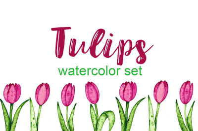 Tulips. Watercolor set