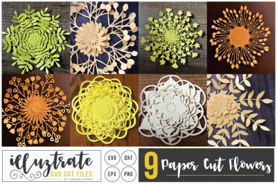 Paper Cutting Flower SVG Cut File, Layered Flower SVG, DIY 3D flower