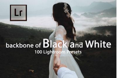 Backbone of Black and White Lightroom Presets