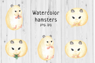 Watercolor hamster 1