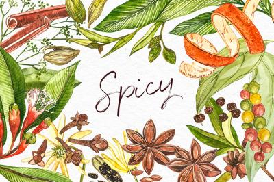 Star anise, Cinnamon, Cardamon