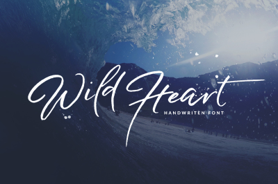Wild Heart Brush Font Set