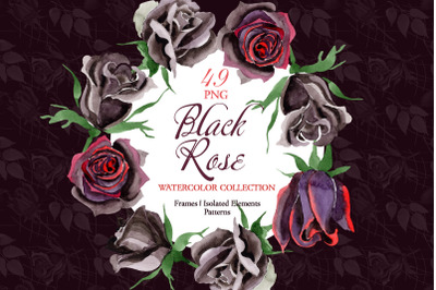 Exclusive black rose watercolor png