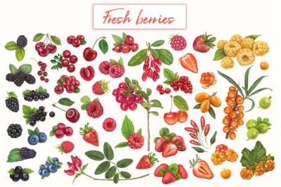 Yummy berries