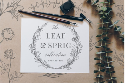 Botanical Illustrations & Logo Kit