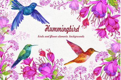 Hummingbirds Clipart flowers. PNG watercolor painting, Birds