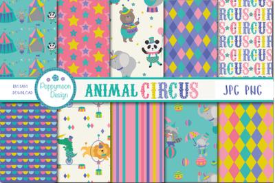Animal Circus paper