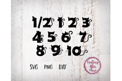Cat Bithday Numbers, Cat SVG, Birthday Shirts