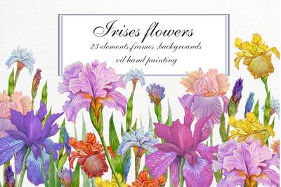 Flower Clipart, iris flowers,23 element Oil hand painting.Spring Flowe