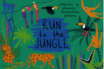Run To The Jungle