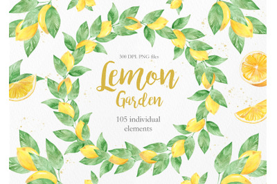 Watercolor Lemon Clipart Collection