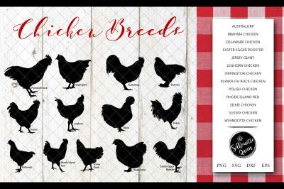 Chicken Breeds Silhouette Vector svg file, chicken svg cut file, silho