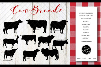 Cow Breeds Silhouette Vector svg file, cow svg cut file, silhouette st