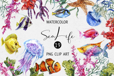 Watercolor Sea Life Clipart