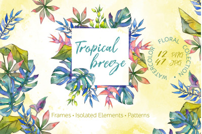 Tropical breeze Watercolor png