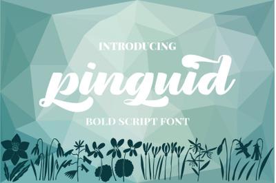 Pinguid | a Bold Script Fonts