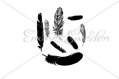 Feathers silhouette Bundle