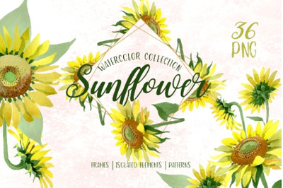 Sunflower Yellow Watercolor png