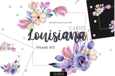 Louisiana flowers. Frame #3