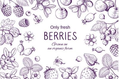 Hand drawn berries frame. Botanical sketch background, wild berry vint