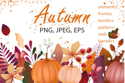 Floral illustrations with autumn leaves, pumpkins.