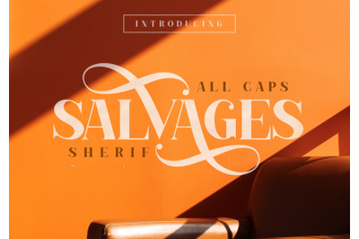 SALVAGES BOLD | SERIF FONT