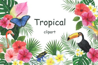 Watercolor tropical