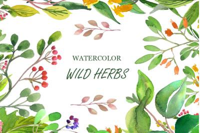 Wilde Herbs Watercolor Set