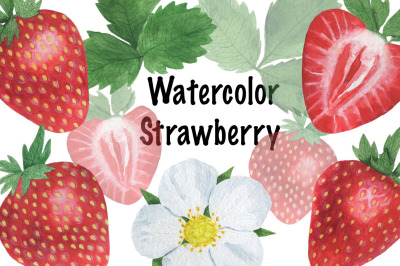 Set of strawberry watercolor Pattern Strawberry Berry Watercolor illus