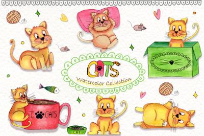Lazy Cats Wattercolor Illustrations