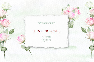 Tender Roses Watercolor Set