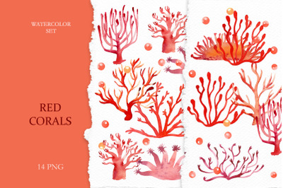 Watercolor Red Corals Clipart
