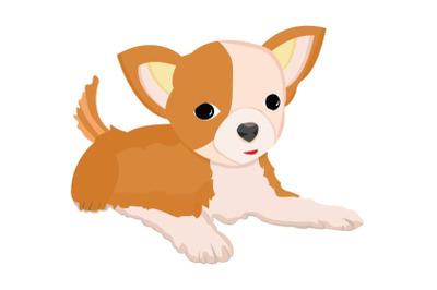 Cute  Chihuahua Dog Illustration