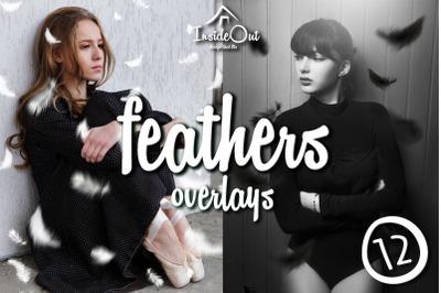 Feathers Photo Overlays Black White Photoshop Falling feather Backdrop