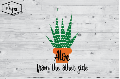 Aloe From The Other Side
