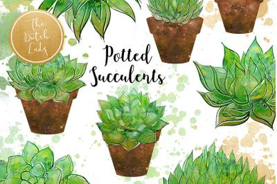 Succulent Potted Plant Clipart Set
