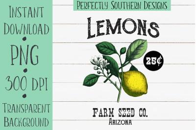 Lemon Seed Packet Design