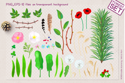vector forest plants set