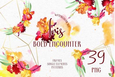 Iris. Bold encounter Watercolor png