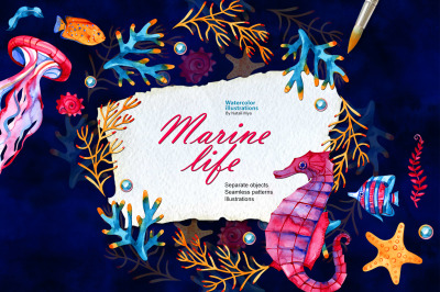 Watercolor marine life set