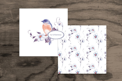 Watercolor bird + pattern