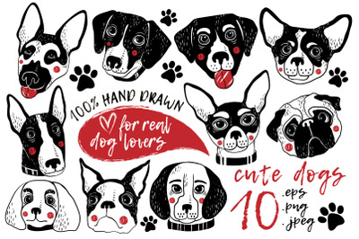 Cute Dogs Graphic Pack